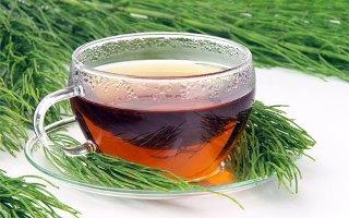 Cum prepari ceai de coada calului