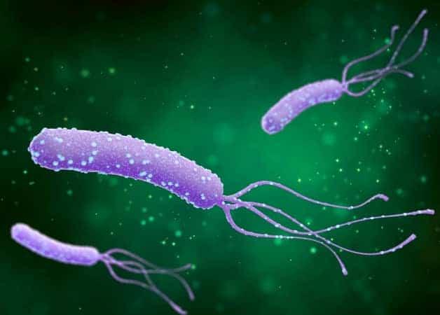 Tratament naturist pentru Helicobacter pylori