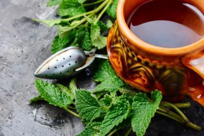 Beneficiile ceaiului de roinita